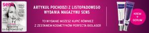 POD_ARTYKUL_S11